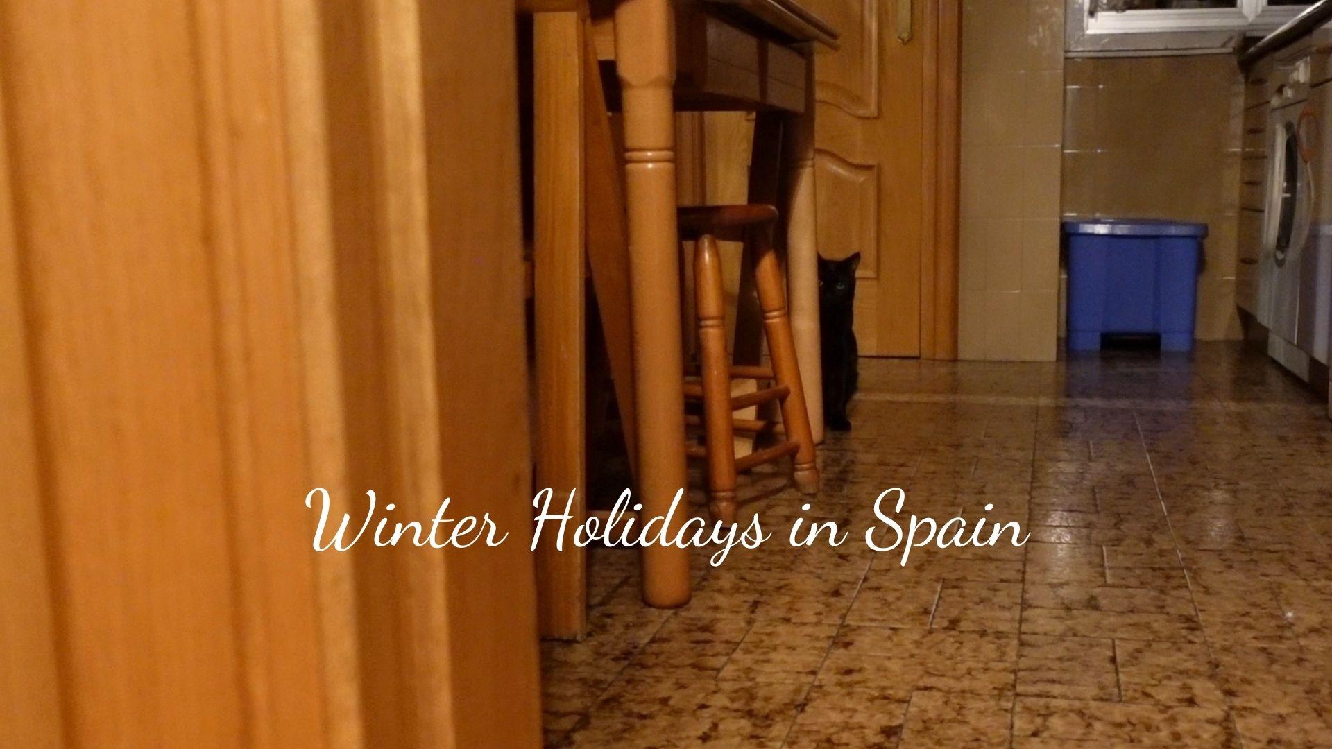 【ダーリンはスペイン人】初めてスペインの彼の実家に!クリスマスディナー | ~ Que Sera Sera ~