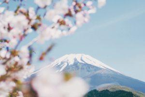 【英語で文化】日本の象徴を英語で説明しよう☆National Symbols